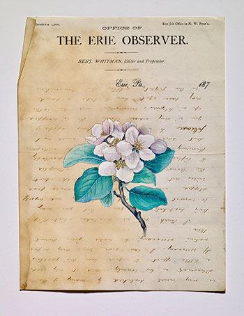 The Erie Observer (DN13153)
